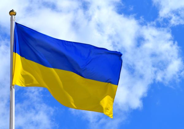 политика, Украина, ООН, мировой порядок, международные отношения