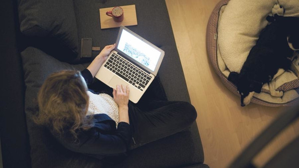 Минтруд, работа, трудоустройство