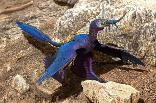 динозавры, желудок, ящерица, Китай