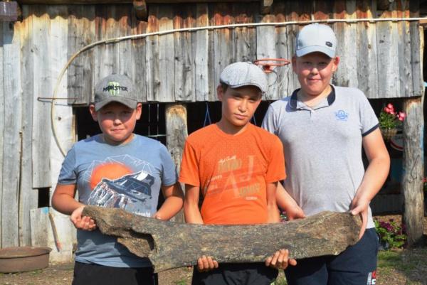 палеонтология, кости, мамонт, Башкирия