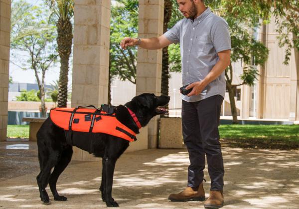 ученые, собака, пульт управления, Израиль