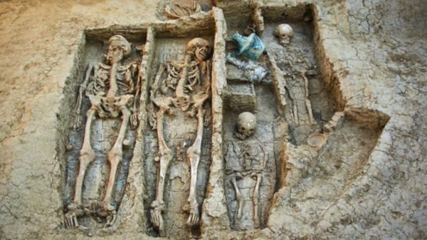 археология, воин, захоронение, Фанагория