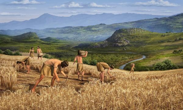 археология, древние люди, земледелие, климат