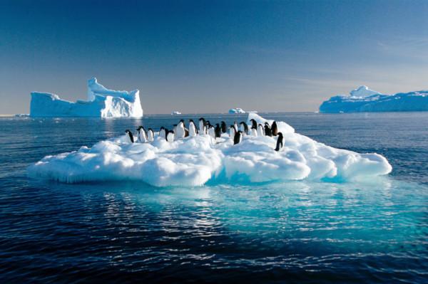 Земля, планета, климат, глобальное потепление