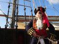 Новая жизнь и смерть пирата Бартоломью Робертса