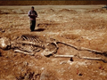 Необычная находка археологов: китайские люди-гиганты