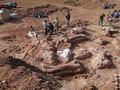 Американские палеонтологи обнаружили кладбище доисторических животных