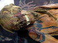 Самые удивительные мумии в мире